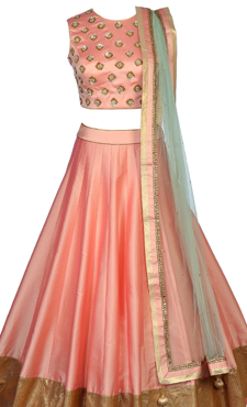 Picture for category Lehenga Cholis