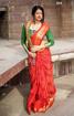 Banarasi Weaving Patola Saree  in Coral Color