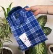 Allen Solly Check Shirts - Blue