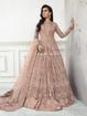Designer pakistani style gowns - beige