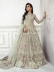Designer pakistani style gowns - Pista